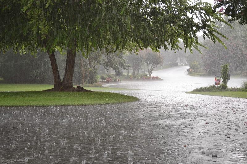 بارندگی موثر